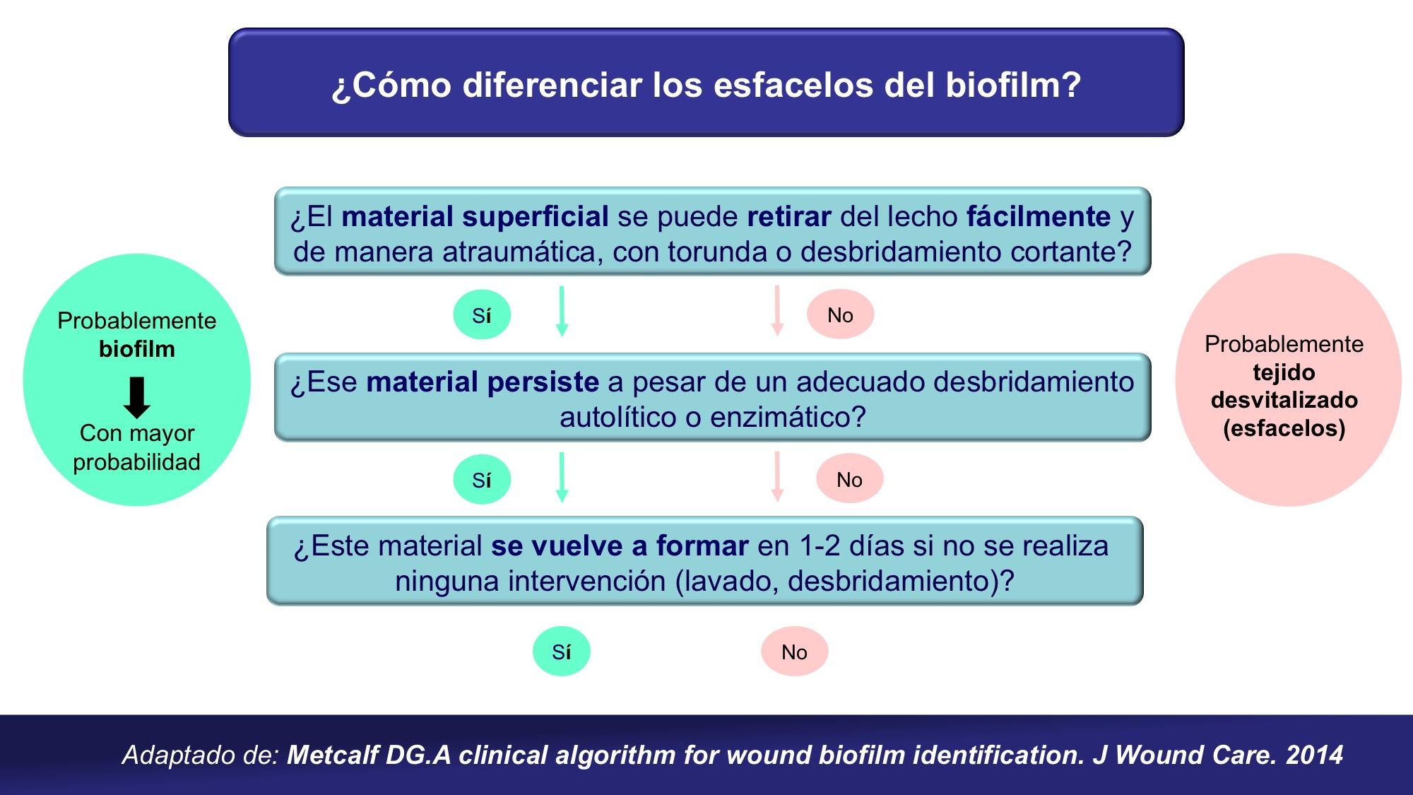 diferencias esfacelos-biofilm