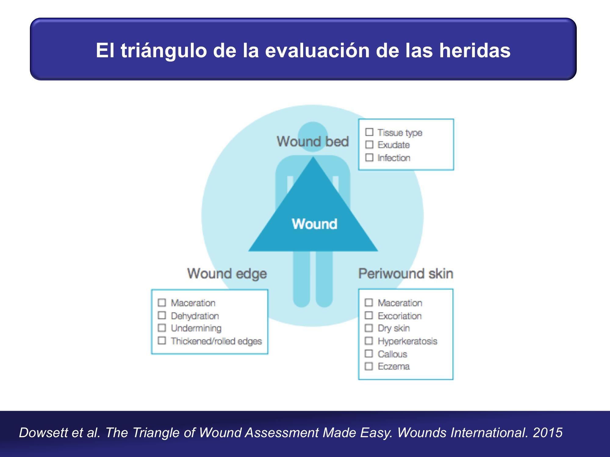 Triángulo evaluación heridas