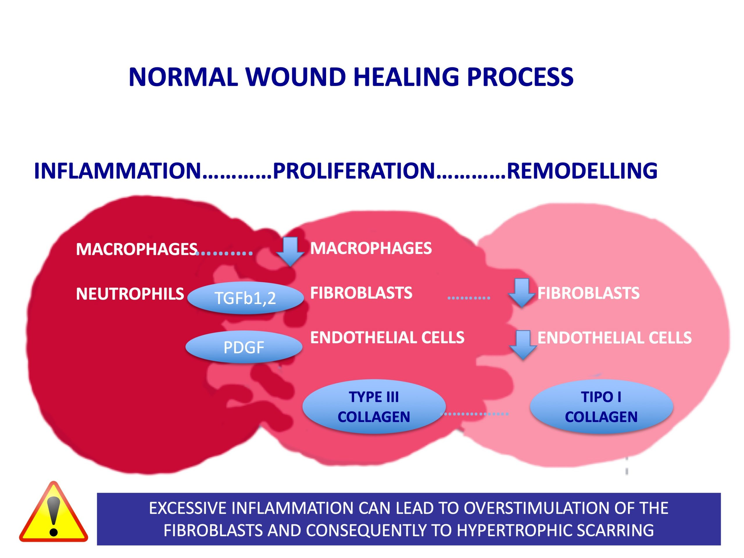 Do steroids delay wound healing steroid injections for nerve damage
